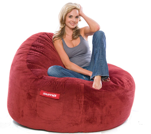Comfy Bean Bag Chairs Are Like Quantum Physics Only Occurring In Theory